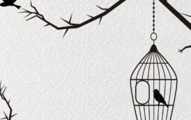 Kisah Kurungan Burung Kecil